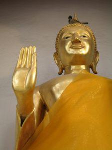 1200042_buddha_and_bird